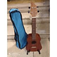 Flycat C10C - ukulele koncertowe + pokrowiec - zestaw PROMOCJA ŚWIĄTECZNA