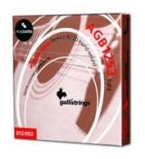 Galli AGB1253 Light Brass Procoated - struny powlekane do gitary akustycznej